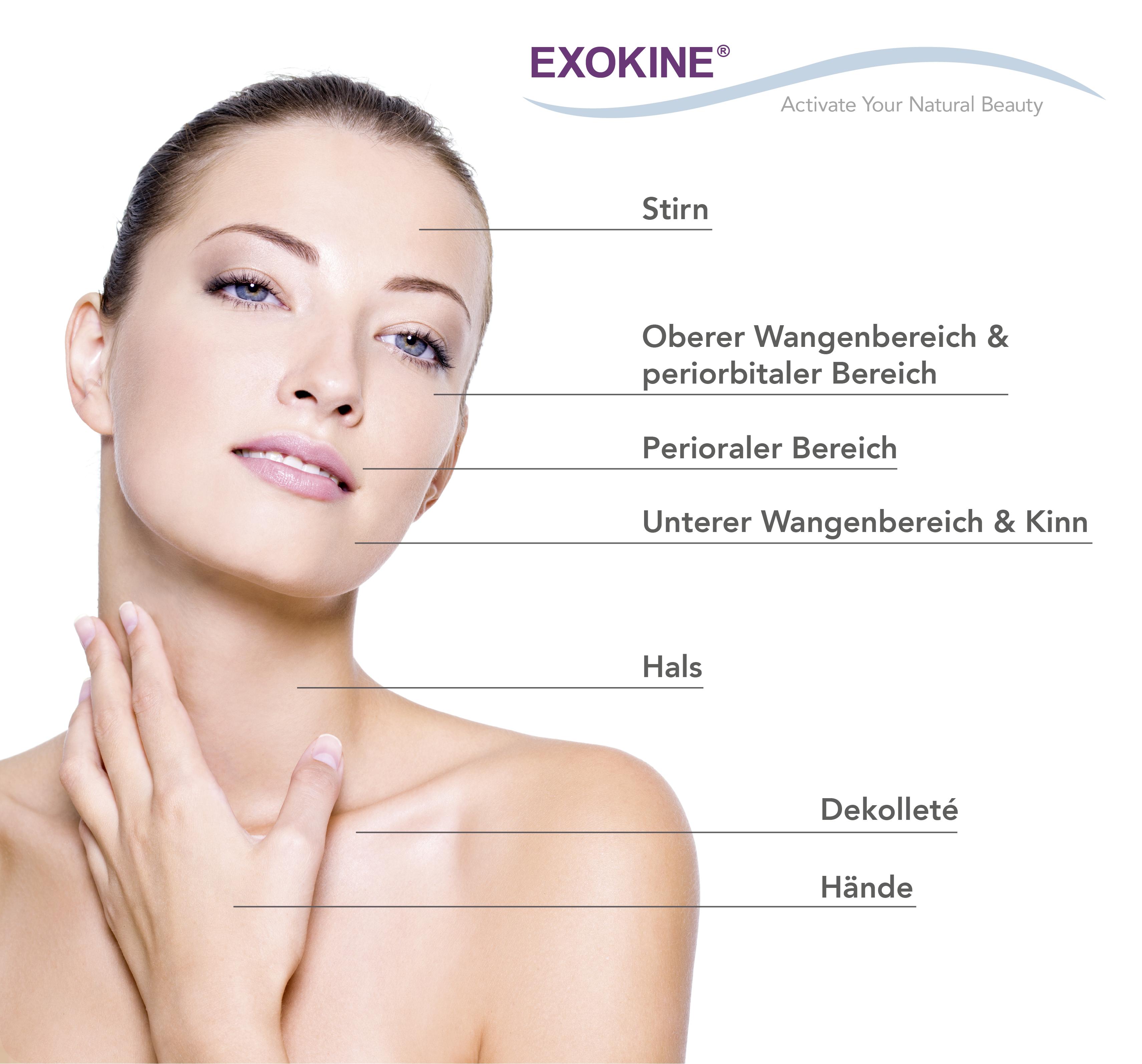 Exokine_Behandlungsregionen_de
